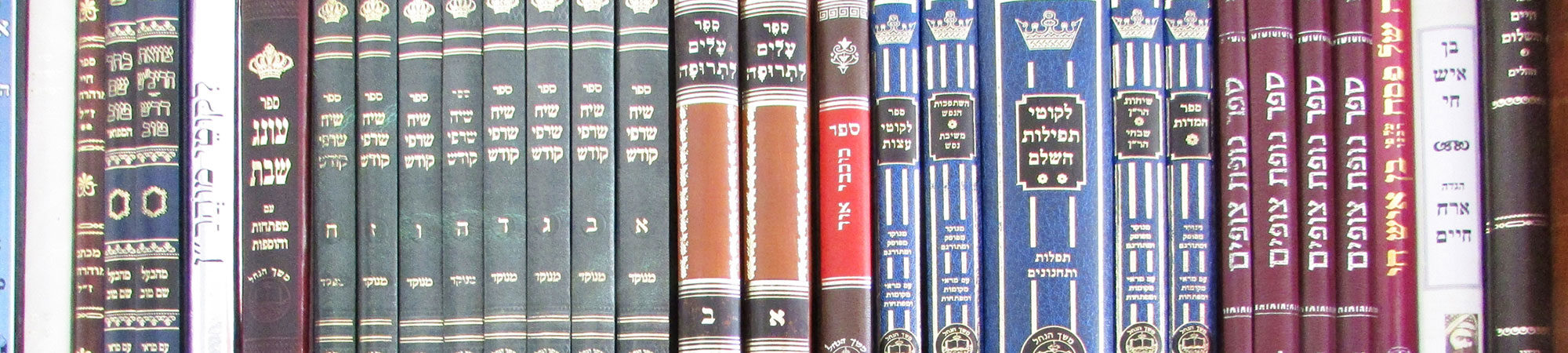 R' Nasan Maimon – Media Library