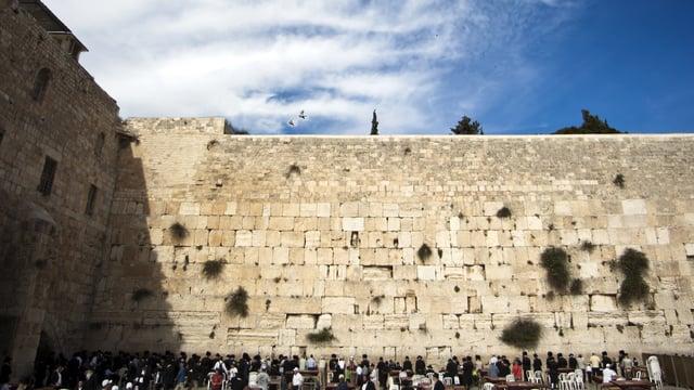 Toldos – Bris Milah and Eretz Yisrael (Clip)