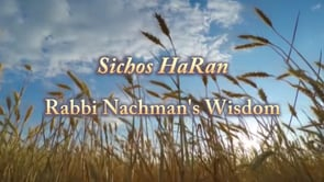 Wisdom 16 – The Silent Scream (Video)