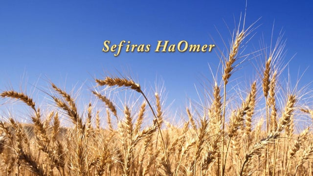 Count the Omer – Free Your Heart (Audio/Slides)