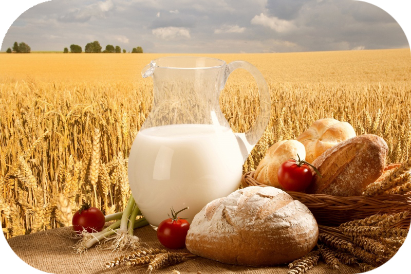 Shavuos - Why Do We Eat a Dairy Meal?