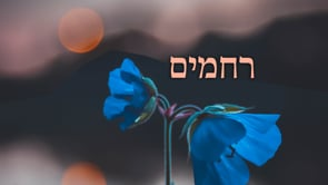 Toldos – HaKol Kol Yaakov – A Voice of Compassion
