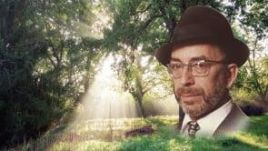 "To Hear Blades of Grass Sing – Rabbi Zvi Aryeh Rosenfeld z""l on Sichos HaRan 163"
